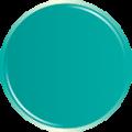 progettazione-immagine-coordinata-pasticceria-verde
