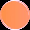 progettazione-immagine-coordinata-pasticceria-arancio-min